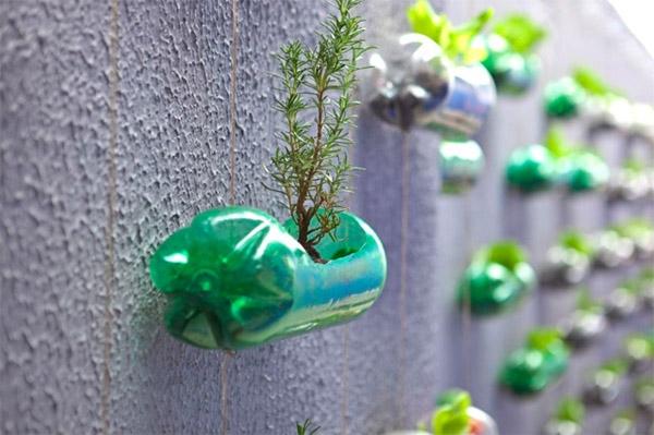 Tự làm vườn treo từ vỏ chai nước ngọt
